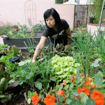 Front Yard to Fork: Grow Your Own and Be Free
